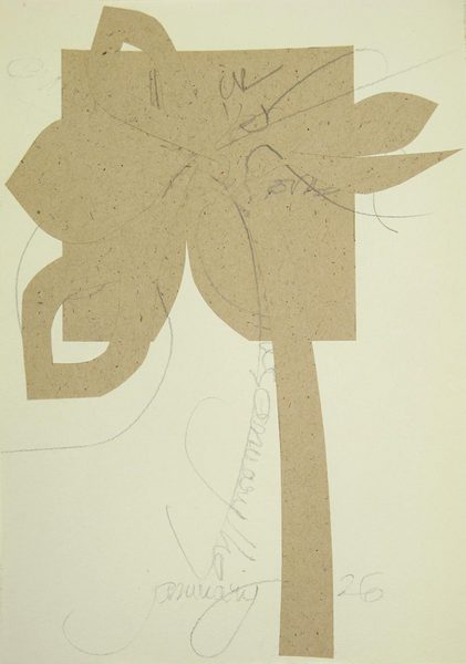 Amaryllis, January 26<br />